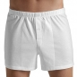 Preview: Boxer Short Cotton Sporty Hanro (HAsp3505)